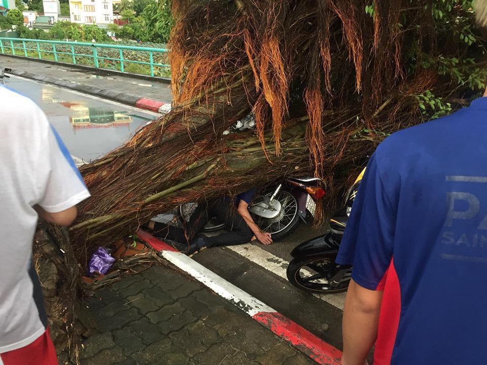 Bão số 4 đang di chuyển vào đất liền, Hà Nội mưa gió khủng khiếp, đã có 1 người chết do cây xanh đè trúng-6