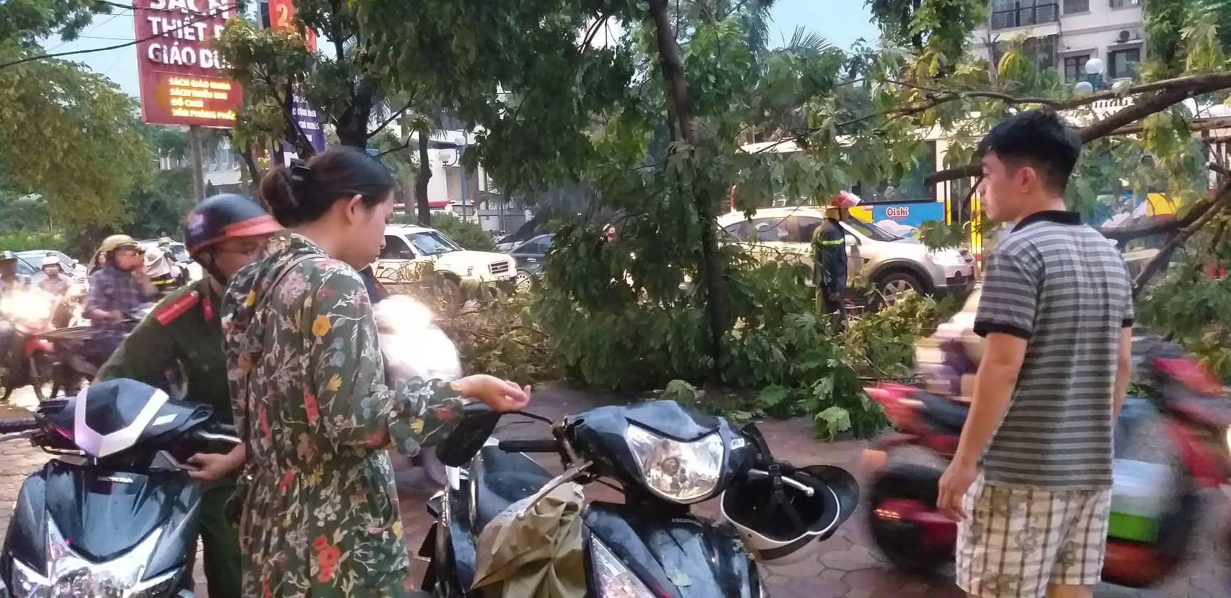 Bão số 4 đang di chuyển vào đất liền, Hà Nội mưa gió khủng khiếp, đã có 1 người chết do cây xanh đè trúng-7