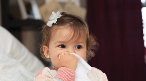 Viêm mũi dị ứng– bài thuốc chữa bệnh từ cây thuốc quanh nhà