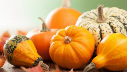 Top thực phẩm dinh dưỡng nên ăn vào mùa thu cho bạn luôn khỏe mạnh