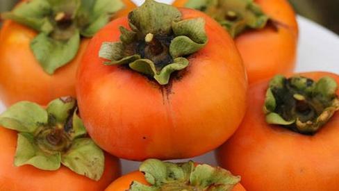 Top 8 loại trái cây tươi ngon vào mùa thu