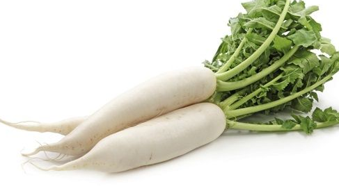Củ cải trắng – nhân sâm của mùa đông