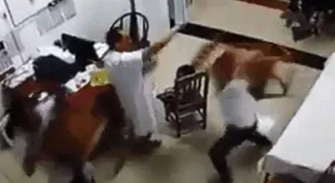 CLIP: Đang cầm dây truyền cho con, ông bố bỗng cầm ghế lao vào đánh nhau với bác sĩ
