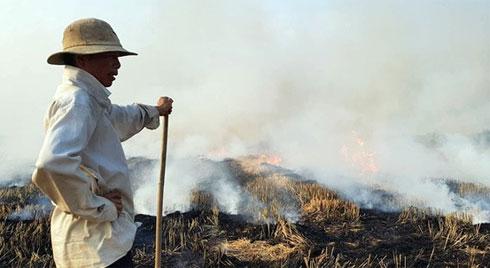 Dùng than tổ ong, đốt rơm rạ gây hại môi trường thế nào?