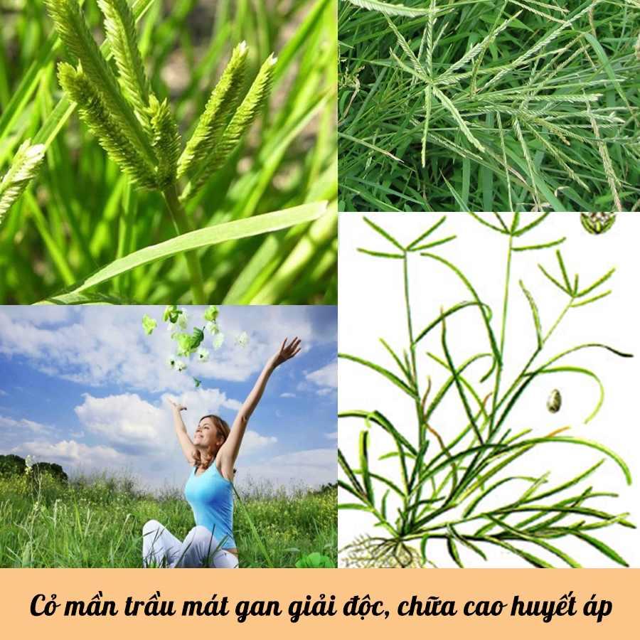 Những công dụng tuyệt vời từ cỏ mần trầu không phải ai cũng biết-3