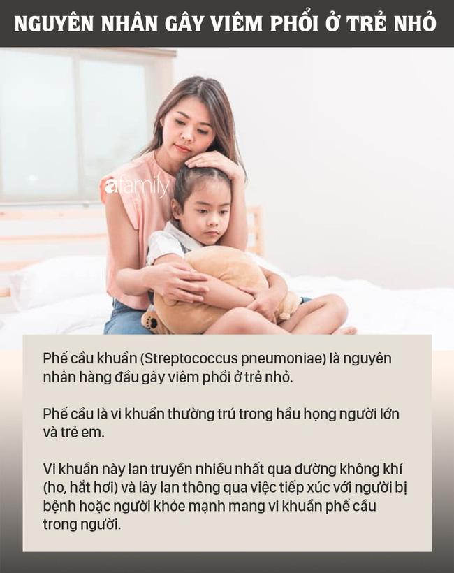 Những trẻ này có nguy cơ bị bệnh viêm phổi cao-1