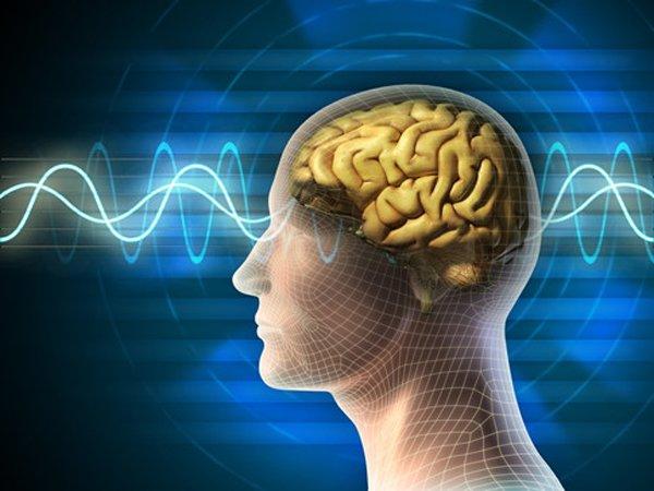 Nghiên cứu của Đại học California: Nghiện nói đùa có thể là dấu hiệu của chứng bệnh thần kinh-3