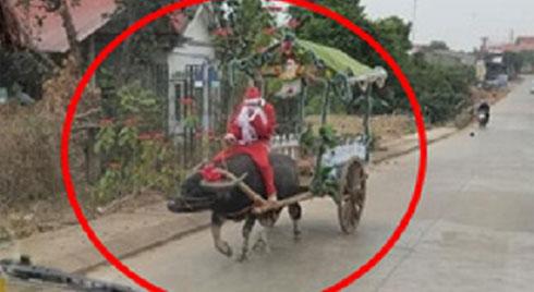 Ông già Noel cưỡi trâu trên chiếc xe tự chế đi khắp làng khiến nhiều người tò mò