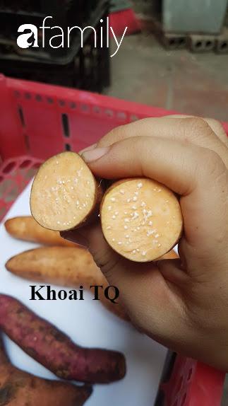 Mùa lạnh ăn khoai lang mật nướng là hết sảy, nhưng chị em đã biết phân biệt khoai Trung Quốc đội lốt Đà Lạt để khỏi mua nhầm chưa?-6