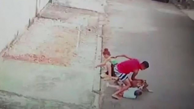 Người đàn ông thất nghiệp tay không cứu bé 4 tuổi khỏi chó pitbull hung dữ