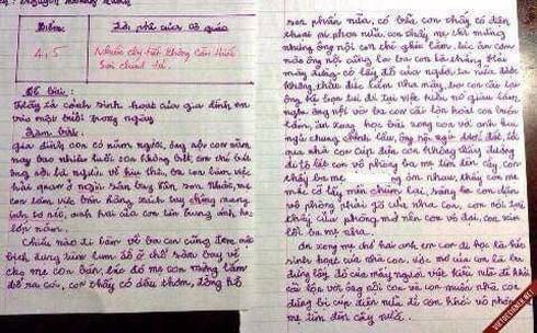 Bài văn tả về gia đình của học sinh lớp 8 khiến người lớn phải tự xấu hổ-1