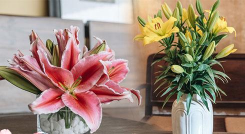 Tết Canh Tý học ngay 2 kiểu cắm hoa ly đơn giản nhưng sang hết ý