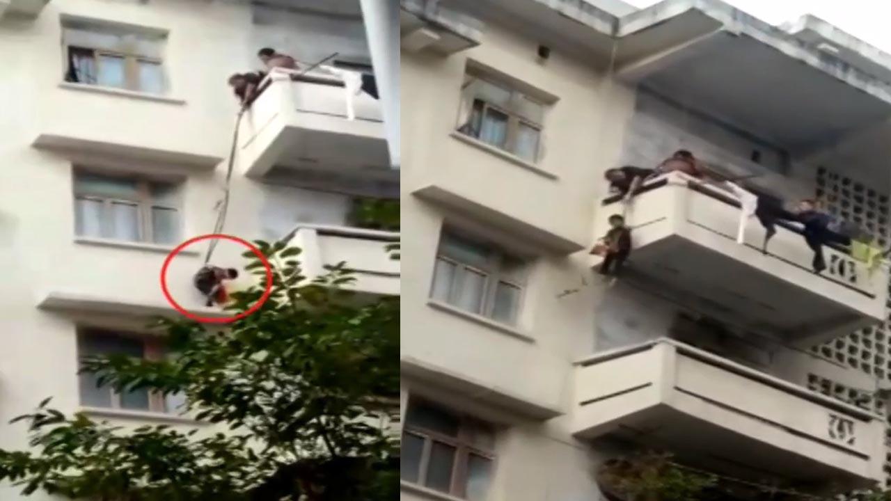 Ông bà cột cháu 7 tuổi thả từ tầng 5 xuống tầng 4 để cứu mèo