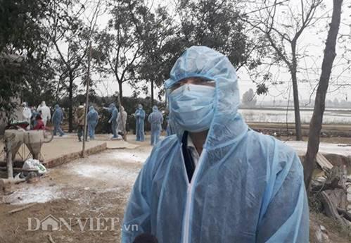 Cám cảnh nơi ổ dịch cúm A/H5N6 đầu tiên phát hiện ở Hà Nội-3