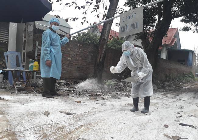 Cám cảnh nơi ổ dịch cúm A/H5N6 đầu tiên phát hiện ở Hà Nội-8