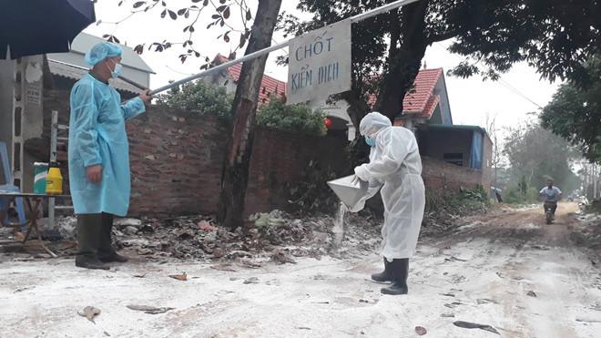 Cúm A/H5N6 trở lại, lệnh cấm bán tháo gia cầm ở vùng dịch-1
