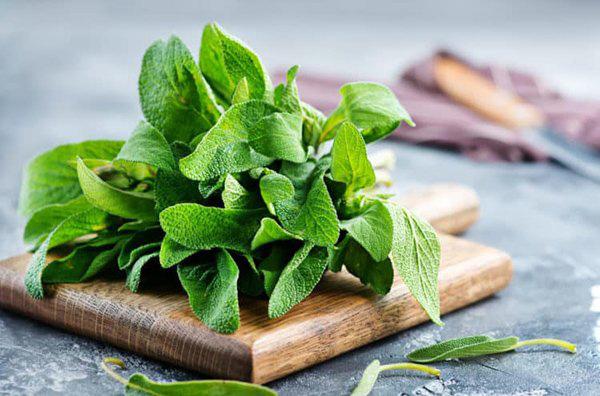 Lưu ngay loạt thực phẩm giúp cơ thể luôn tỏa hương thơm chẳng thua khi dùng nước hoa-4