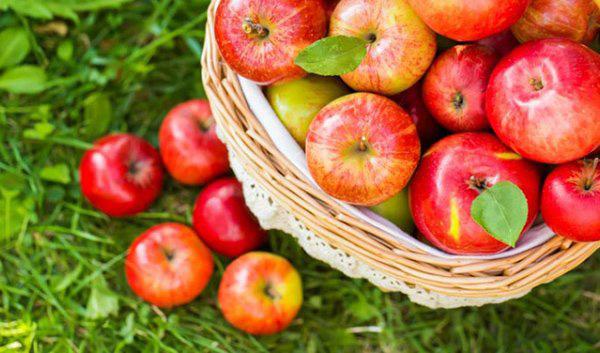 Lưu ngay loạt thực phẩm giúp cơ thể luôn tỏa hương thơm chẳng thua khi dùng nước hoa-8