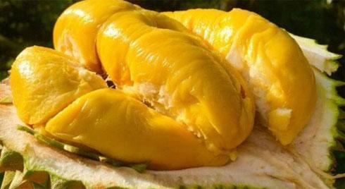 Ăn sầu riêng có tốt không và những lưu ý khi ăn