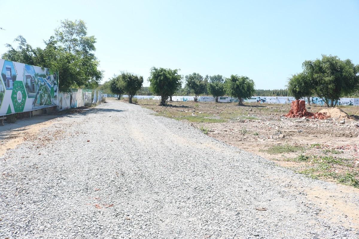 """Ăn theo cơn sốt"""" đất Bình Ba, Cali Green Park rao bán lúa non dự án còn trên giấy-5"""