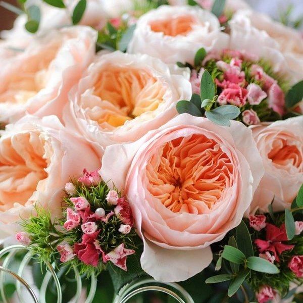 Mua hoa tặng người yêu ngày 20/10 chớ dại chọn những loại hoa này nếu không muốn