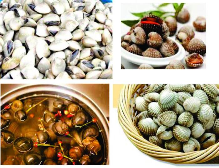 Mẹo giúp làm sạch cát bẩn trong ngao, sò, ốc giúp món ăn thêm hoàn hảo-2