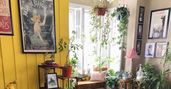 Thiết kế nhà nhỏ 60m² theo xu hướng sống xanh, phòng khách rộng mênh mông nhờ bí quyết từ những cánh cửa