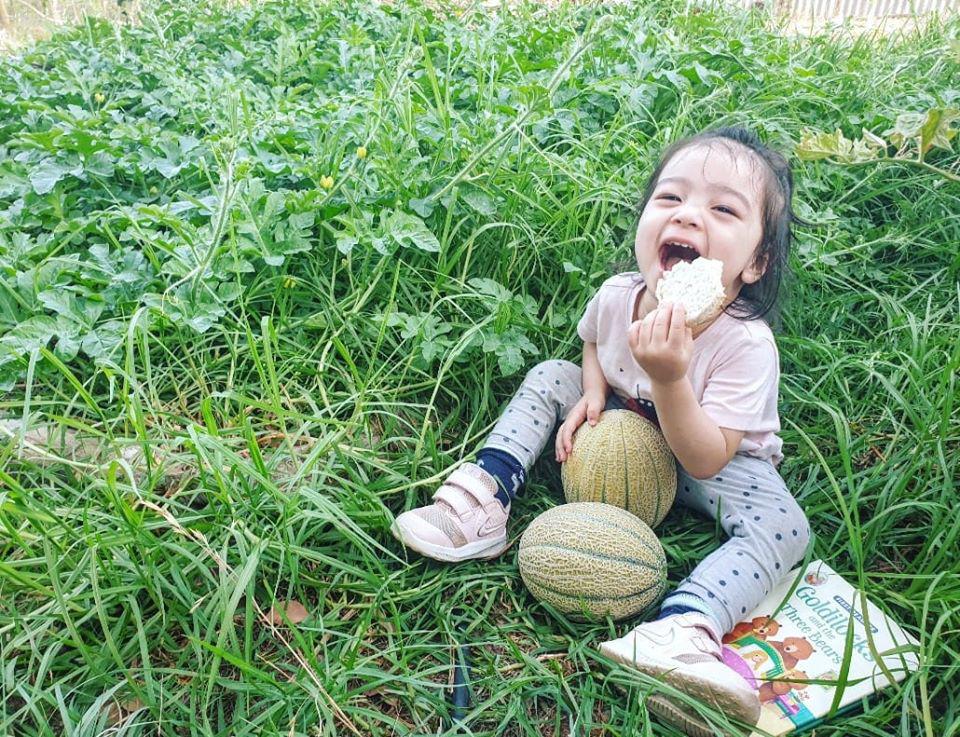 Mê vườn, người phụ nữ 8X chuyển từ thành phố về mảnh vườn rộng 2000m2 ở ngoại ô để tận hưởng hạnh phúc ngay và luôn-6