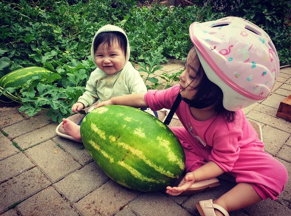 Mê vườn, người phụ nữ 8X chuyển từ thành phố về mảnh vườn rộng 2000m2 ở ngoại ô để tận hưởng hạnh phúc ngay và luôn-7