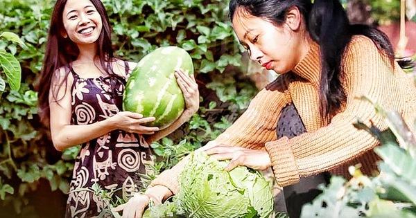 Mê vườn, người phụ nữ 8X chuyển từ thành phố về mảnh vườn rộng 2000m2 ở ngoại ô để tận hưởng hạnh phúc