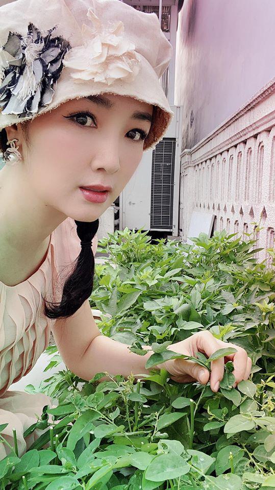 Hoa hậu Giáng My trồng rau và hoa quanh biệt thự trong lúc ở nhà trốn Covid-19-6