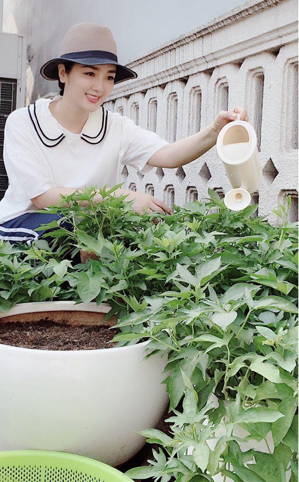 Hoa hậu Giáng My trồng rau và hoa quanh biệt thự trong lúc ở nhà trốn Covid-19-9