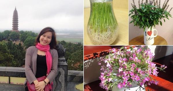 Mẹ đảm tại Hà Nội trang trí nhà theo cách ít ai ngờ tới nhờ tận dụng những loại cây hết sức bình thường, chị em đang nghỉ ở nhà dài ngày chỉ việc học theo