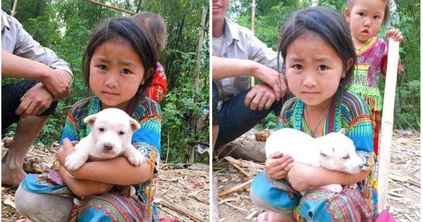 Bị mẹ bắt chó đi bán, cô bé liên tục xin xỏ và hành động khác thường từ vị khách lạ mặt