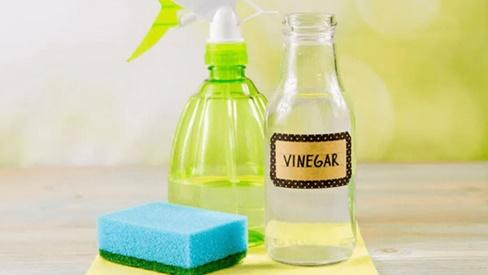 Giấm có thể làm sạch mọi thứ nhưng chớ dại mà dùng giấm để tẩy những thứ này