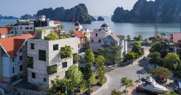 Mê mẩn biệt thự phủ kín cây xanh ở Hạ Long có view biển tuyệt đẹp