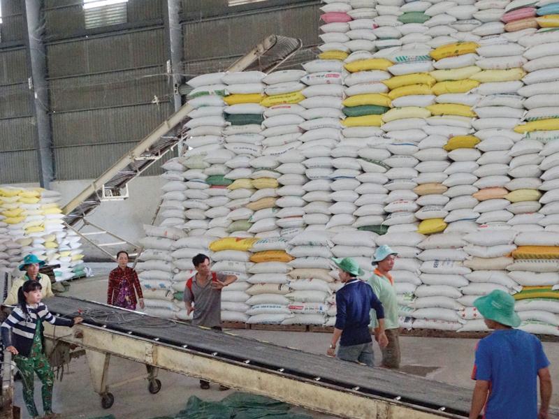 Hải quan mở hệ thống đăng ký trong đêm để giải cứu gạo tồn kho-1