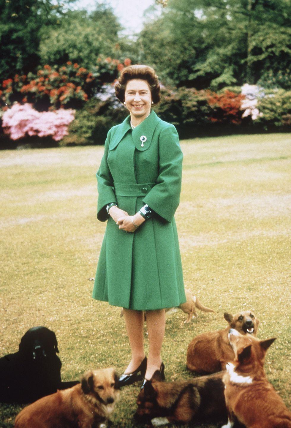 Bí mật váy áo của Nữ hoàng Anh suốt 100 năm vừa mới được tiết lộ: Không phải các nguyên tắc mà ở chi tiết nhỏ xíu 1 bên vai-4