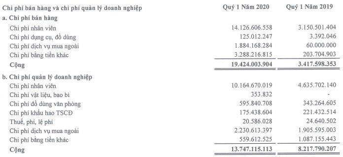 Bất động sản Netland (NRC): Quý 1 báo lỗ 30 tỷ đồng-1