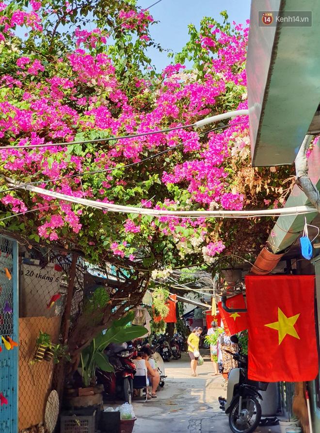 Ảnh: Ngắm một Sài Gòn yên bình trong sáng 30/4, mọi tuyến đường, góc phố phấp phới cờ hoa-12