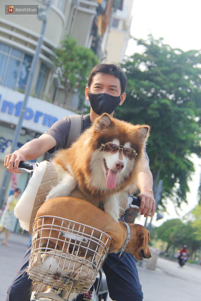 Ảnh: Ngắm một Sài Gòn yên bình trong sáng 30/4, mọi tuyến đường, góc phố phấp phới cờ hoa-6