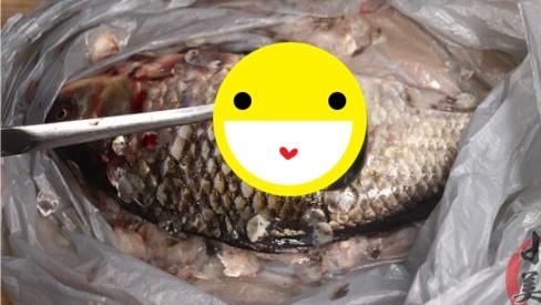 Đánh vảy cá đừng chỉ dùng dao, thêm một dụng cụ trong nhà sẽ nhanh, sạch không sợ đứt tay