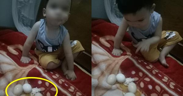 Con trai thắc mắc tự ấp trứng gà cả đêm nhưng sáng không nở, mẹ