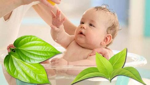 Trị rôm sẩy cho bé với 6 phương thuốc dân gian an toàn và hiệu quả