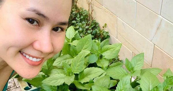 Khám phá khu vườn xanh mướt của Thân Thúy Hà