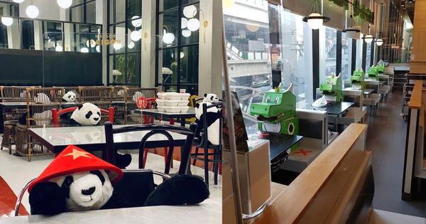 Thú vị nhà hàng ở Thái Lan: Xếp gấu bông đội nón lá, khủng long ngồi ăn cùng khách cho bớt cô đơn khi phải giãn cách xã hội