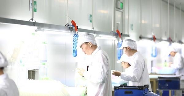 Lao động và việc làm trước tác động của đại dịch COVID-19