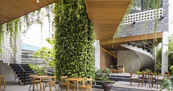 Lạ mắt với vườn treo tại Đà Nẵng được cải tạo từ căn nhà xây dang dở