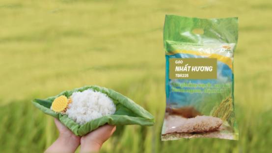 6 loại gạo tốt cho người bệnh, người già, trẻ nhỏ