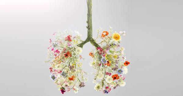 Khi môi trường luôn ô nhiễm và bệnh COVID-19 vẫn